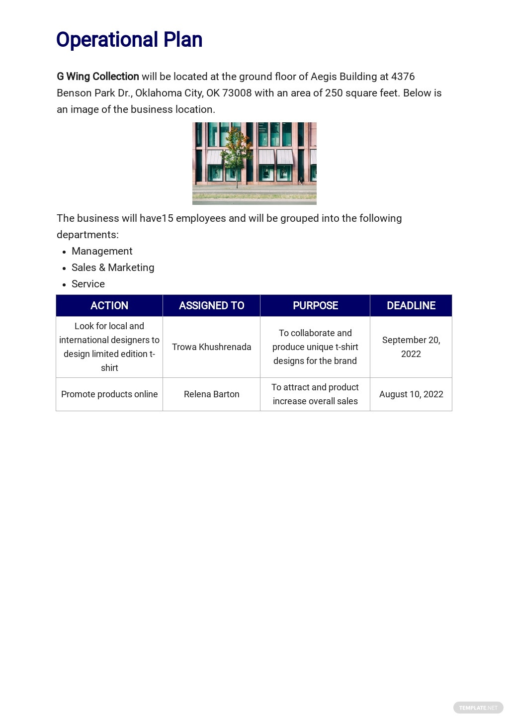 T Shirt Company Business Plan Template 4.jpe