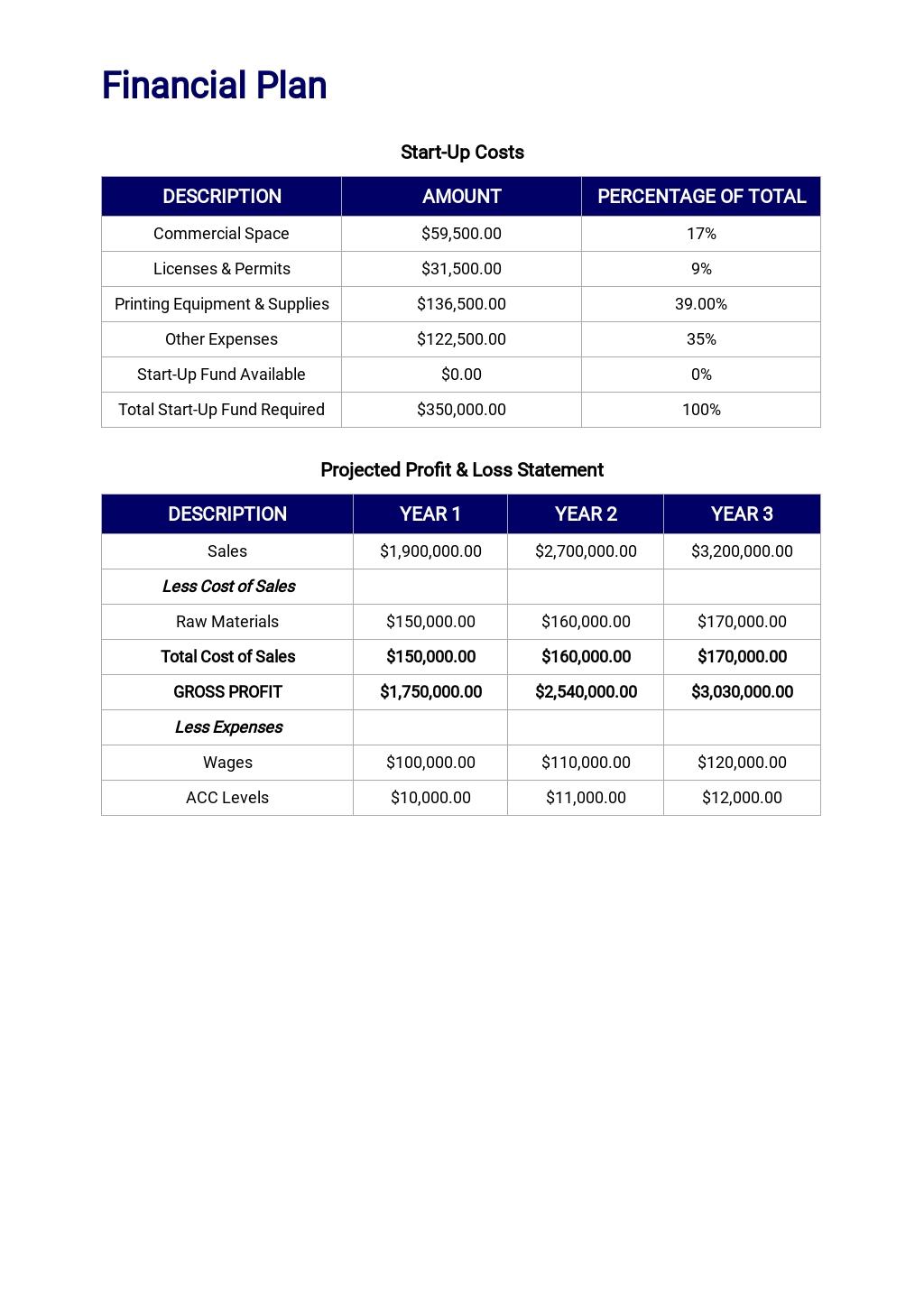T Shirt Company Business Plan Template 6.jpe