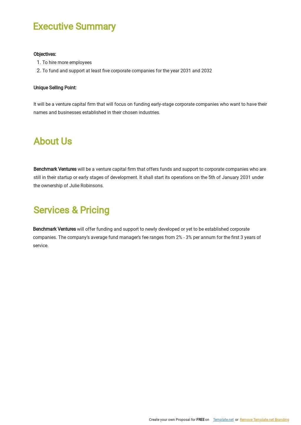 Venture Capital Business Plan Template 1.jpe