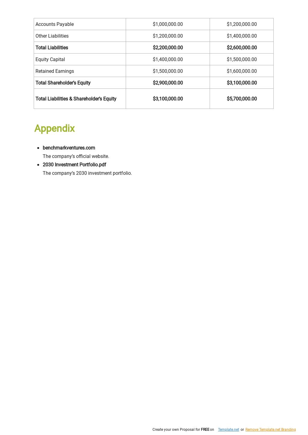 Venture Capital Business Plan Template 7.jpe
