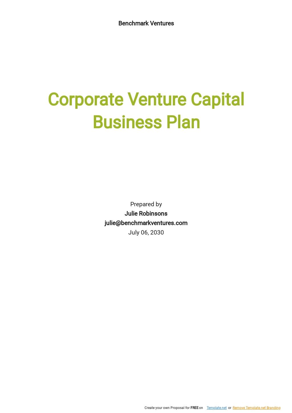 Venture Capital Business Plan Template.jpe