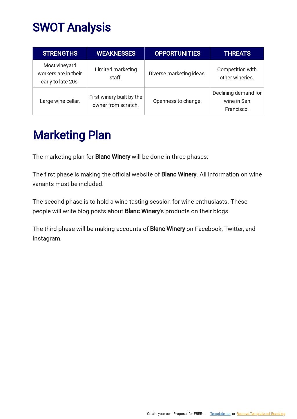 Wine/Winery Business Plan Template 3.jpe