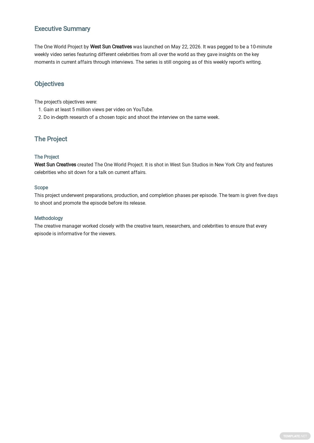 Weekly Project Report Template 1.jpe