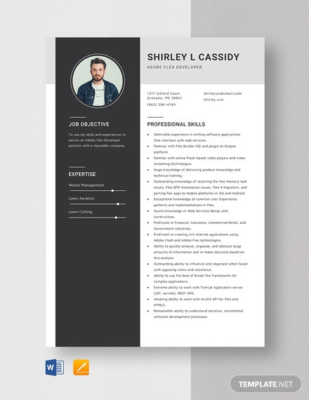 Adobe Flex Developer Resume Template