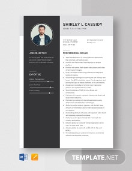 Adobe Flex Developer Resume Template