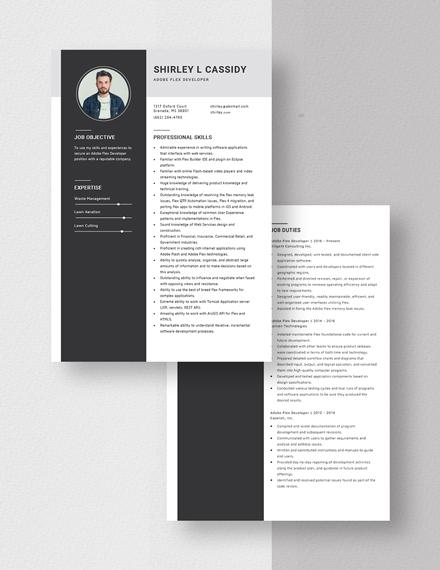Adobe Flex Developer Resume Download
