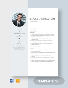 AML Analyst Resume Template