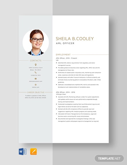 AML Officer Resume Template