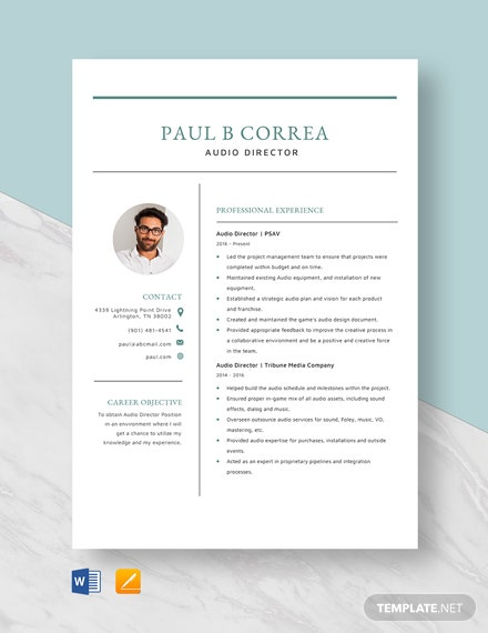 Audio Director Resume Template
