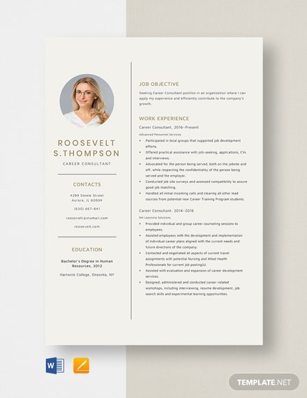 Career Consultant Resume