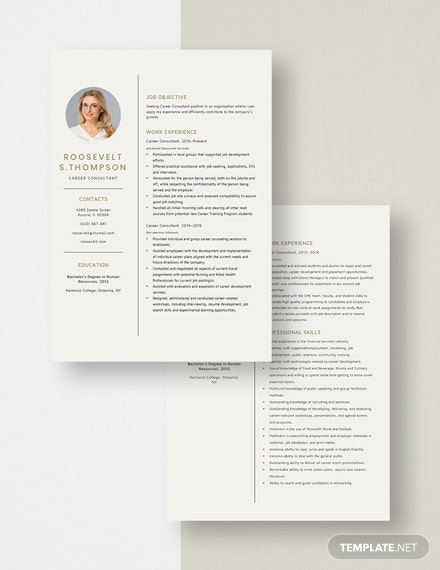 Career Consultant Resume Download