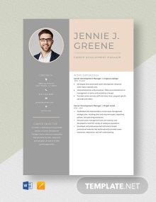 Career Development Manager Resume Template