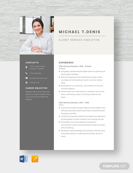 Client Service Executive Resume Template