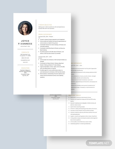 Assistant CEO Resume Download
