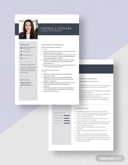 Channel Sales Manager Resume Download