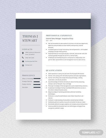 Channel Sales Manager Resume Template