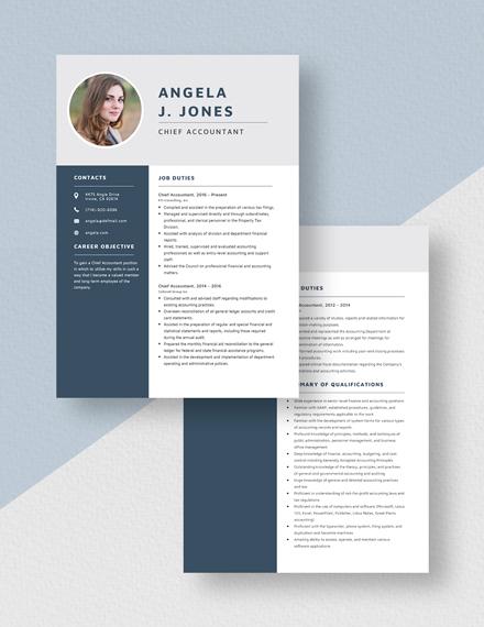 chief accountant resume template  word doc  apple mac