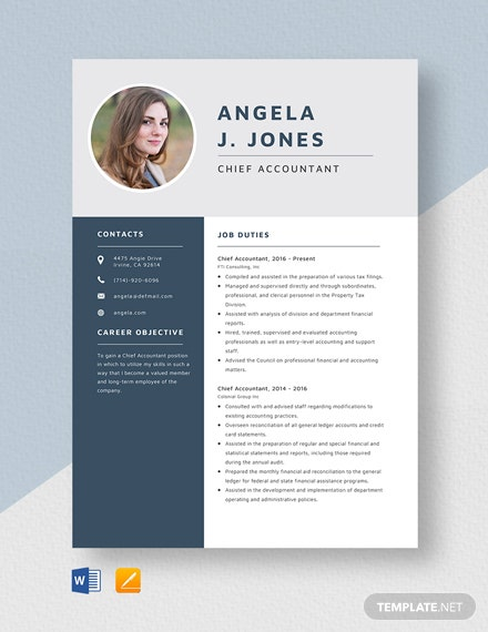 Chief Accountant Resume Template