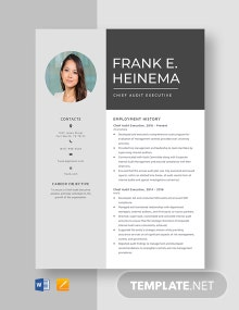Chief Audit Executive Resume Template