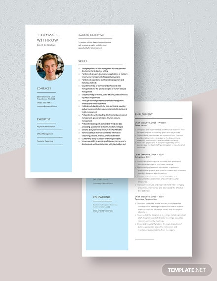 Chief Executive Resume Download