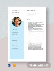 Chief Executive Resume Template