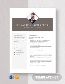 Chief Financial Officer Resume Template