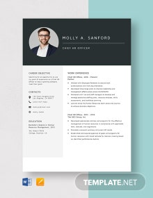 Chief HR Officer Resume Template