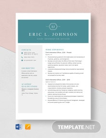 Chief Information Officer Resume Template