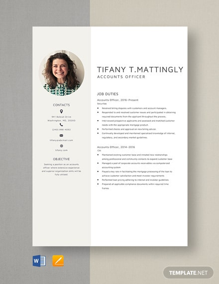 Accounts Officer Resume Template