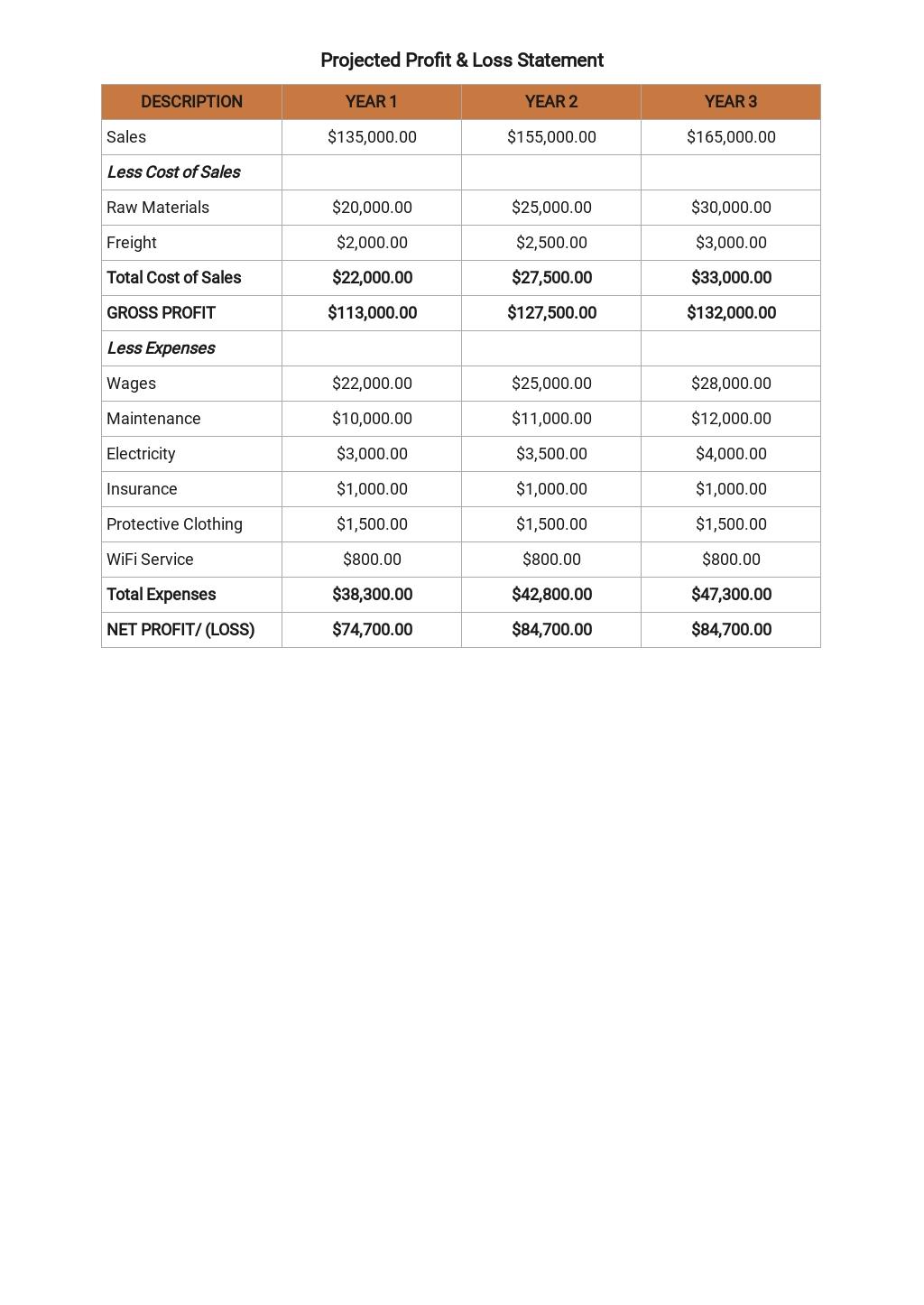 Simple Business Plan Budget Template 7.jpe