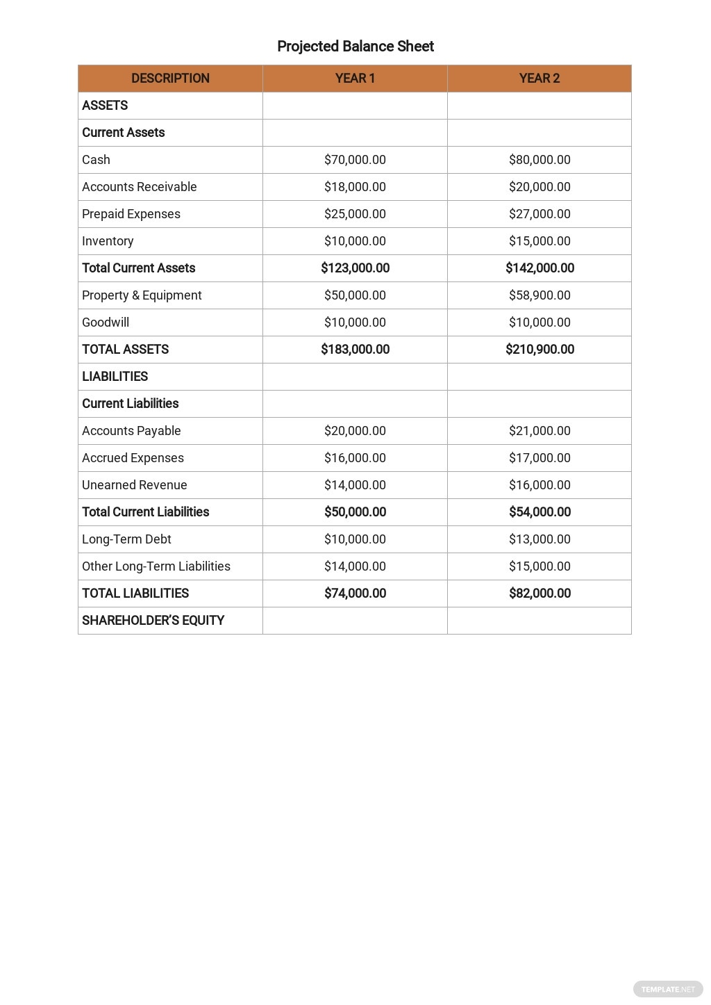Simple Business Plan Budget Template 8.jpe