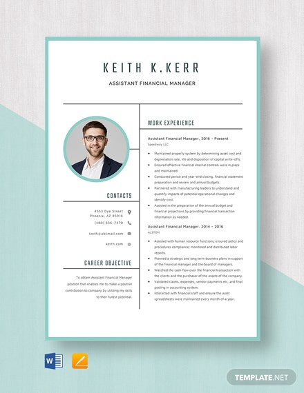 Assistant Financial Manager Resume Template