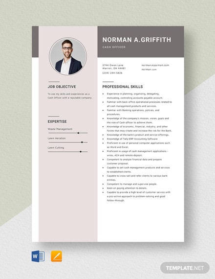 Cash Officer Resume Template