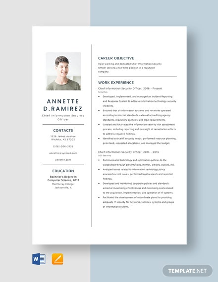 Chief Information Security Officer Resume Template  Word   Apple Pages   Template