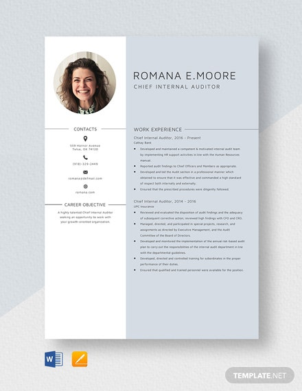 Chief Internal Auditor Resume Template