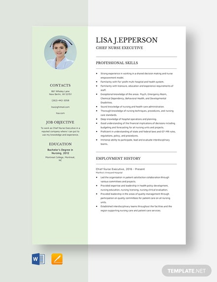Chief Nurse Executive Resume Template