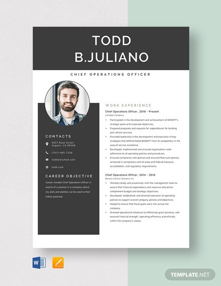 Chief Operations Officer Resume Template