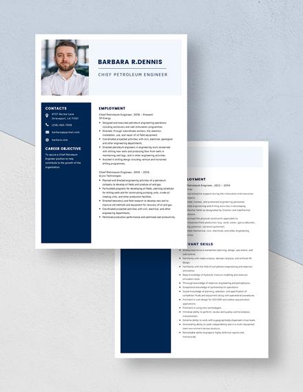 ChiefPetroleum Engineer Resume Download