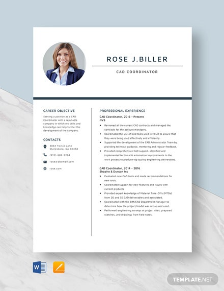 CAD Coordinator Resume Template