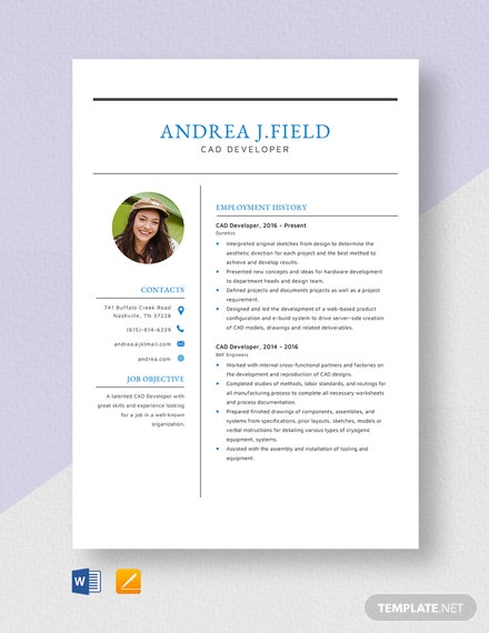 CAD Developer Resume Template