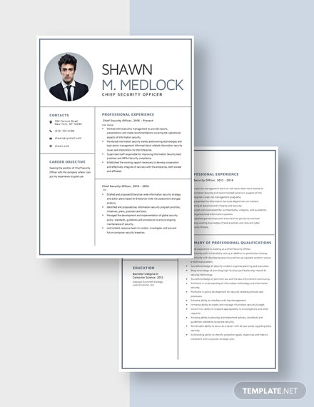 Chief Security Officer Resume Download