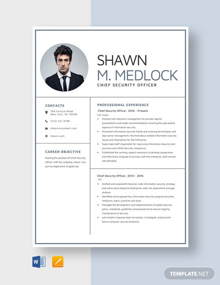 Chief Security Officer Resume
