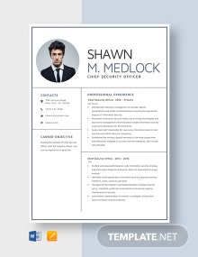 Chief Security Officer Resume Template