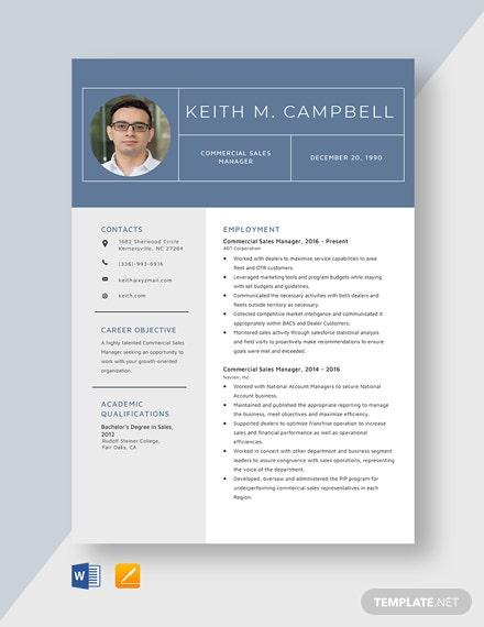 Commercial Sales Manager Resume
