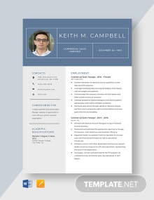Commercial Sales Manager Resume Template