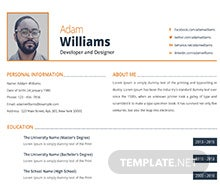 Free Developer and Designer Resume Template
