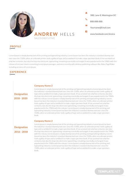 Free Sales Executive Resume Template