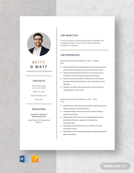 Advertising Account Coordinator Resume Template