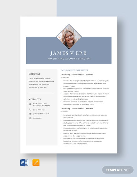 Advertising Account Director Resume Template