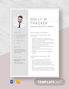 Assistant Director of Financial Aid Resume Template